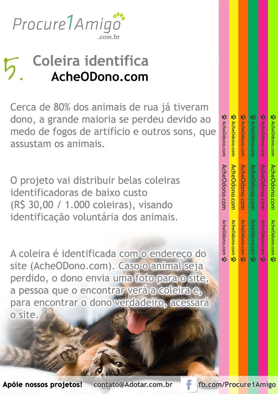 Nossos projetos para salvar os animais